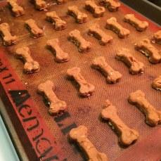dog_dough3