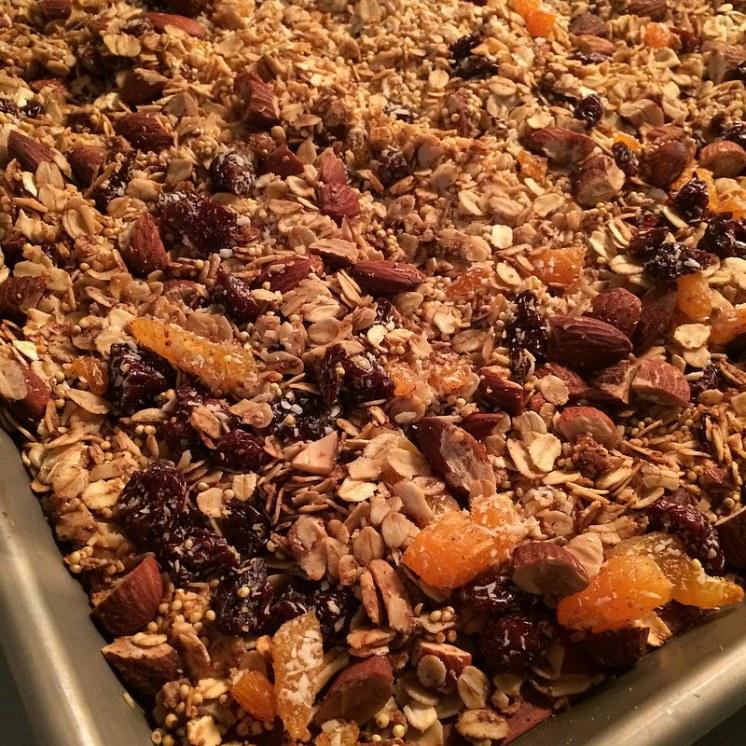 millet granola detail